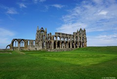 Whitby Abbey (ute.mueller) Tags: england urlaub dracula whitby northyorkshire whitbyabbey 2016 bramstoker utemller morty2016