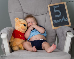 5 Months- July 4, 2016 (zachary.locks) Tags: bear old baby jack big hands chair infant sitting eating five fast pooh his growing feed months winnie cy365 zlocks
