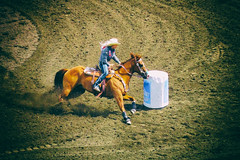 barrels (DJHuber) Tags: ladies horse cowgirl dust day4 infield dayfour calgarystampede 2016 barrelracing calgaryherald