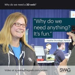 Why do we need anything? It's fun. (SWAG - Speak With A Geek) Tags: 3d technology tech quote meme swag threedimensional 3dweb speakwithageek autodeskforgedevcon 3dwebfest