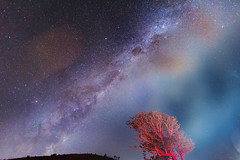 Milky Way - headlight flare (Mikey Mack) Tags: landscapes excellent