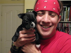 My eyes closed with the new dog (krisjaus) Tags: dogs puppy bostonterrier puppies buddy smalldogs newpuppy bostonterriers babydogs krisjaus danielleeberhart