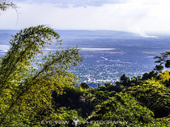 Kingston Landscape (Eye-View Photography) Tags: blue trees sky white green nature clouds nikon kingston jamaica breezy eyeview p510