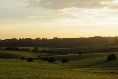 Fields of Tranquility (David Hoffman '41) Tags: nature landscape country rural farm agriculture fodder hay bales field peace quiet tranquility calm dusk sunset sundown ray sky day spring light angle south charlottecounty virginia pasture hills serene