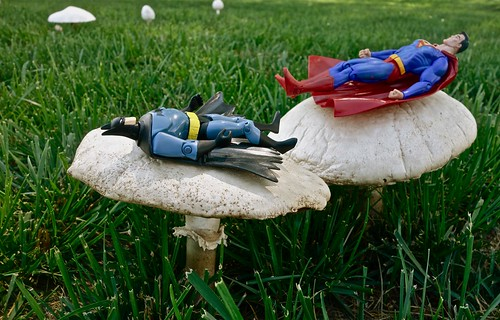 Two Superheros Take Time Out From Their Busy Crime Fighting Schedule to Relax in the Sun on a Couple of Giant Toadstools