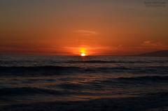 Sunset in Santa Monica, CA (azmimertcelik) Tags: california sunset usa santamonica seagul