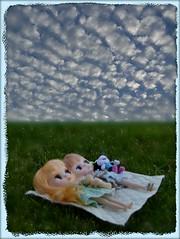 223/365 - Cloud Watching