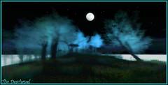 Clair de lune (Tim Deschanel) Tags: life moon tree forest lune landscape tim sl second paysage foret arbre leroy deschanel