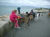 DeerIsland06-03-2012007