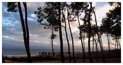 coucher de soleil (Marilys77) Tags: mer soir coucherdesoleil vende pinde