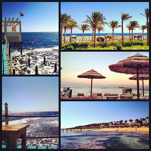 Just another day by the beach @rixossharm #sharm #rixos