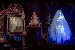 George and Constance, 1877 (Brett Kiger) Tags: world 35mm canon eos george magic sigma kingdom disney haunted attic mansion wdw walt constance hightower hatchaway 5dmarkiii