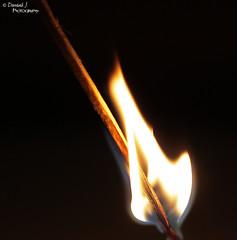 Burn Down II. ( Dominik J. Photography) Tags: wood hot macro canon fire eos smoke details flames 100mm flame match stick holz flamme rauch heiss abbrennen 5dmarkii