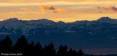 DSC_8334_1_LP (_Lawri_) Tags: panorama mountains alps landscape schweiz nikon berge mountainside alpen bodensee sonne sonnenaufgang säntis markdorf d80 gehrenberg nikond80 alpsteinmassiv