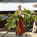 Woman holding raikhaniyo branches to use for fodder