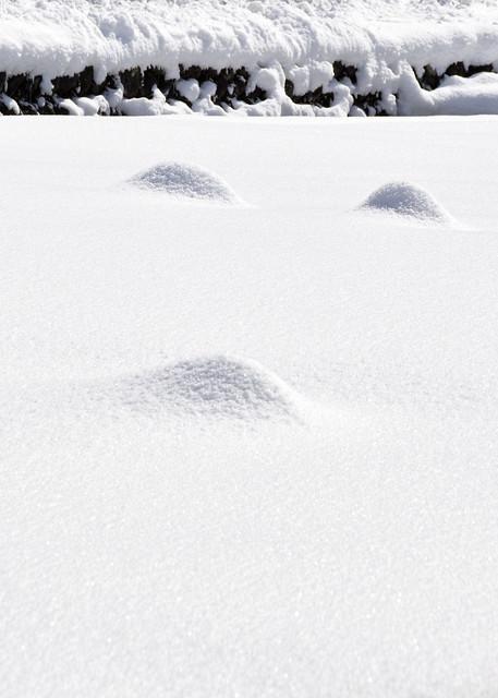 A Snowy Scene (3)
