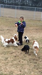 "Kendra loves to play with the dogs • <a style=""font-size:0.8em;"" href=""http://www.flickr.com/photos/72564046@N04/14075085916/"" target=""_blank"">View on Flickr</a>"
