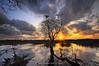 ::That Way:: (Green.Boy) Tags: longexposure sunset cloud tree beautiful yellow nikon sigma malaysia kelvin ultrawide sigma1020mm singleexposure kualaabang d300s