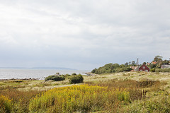Beach Life (FamiljenHelsingborg) Tags: sea beach skne sweden ngelholm vejbystrand magnarp
