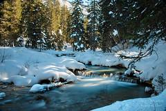 Hear the winter whisper ((Virginie Le Carré)) Tags: longexposure winter snow water forest montagne landscape eau hiver neige paysage montain forêt pauselongue