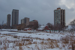 Fields and farms (aerojad) Tags: park winter snow chicago cold lincolnpark chicagoist southpond