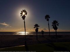 OXNARD, CA Mandalay Beach Resort PB015107 ADJ (vratsab) Tags: ocean california usa beach palms island coast pacific oxnard palmy 5photosaday mandalaybeach