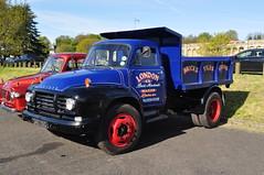 Bedford J5 Tipper 340UXO (Richard.Crockett 64) Tags: truck bedford tipper lorry crystalpalace londontobrighton j5 2016 commercialvehicle hcvs londonboroughofbromley historiccommercialvehiclesociety 340uxo