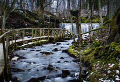 Stream (Andris Nikolajevs) Tags: trees green nature water forest river landscape waterfall rocks long exposure path nikond3300