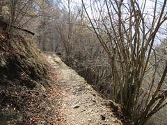2016-032926 (bubbahop) Tags: switzerland hike locarno 2016 cardada europetrip33