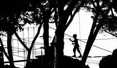 Adventure park... (sermatimati) Tags: park trees light shadow red bw sun white black hot rome roma verde nature yellow alberi kids children fun gold for wooden nikon warm play bambini magic ombra young natura games charm adventure instructors shade sling bracelet paths ropes fotografia eur learn luce engage giochi commitment corde difficulty bello divertimento understand fotografare confront impegno sermatimati ciocare