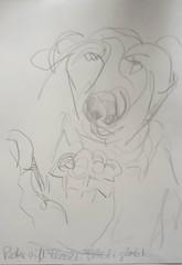 Aufarbeitung einer Kindheit: Peter ruft Flocki. Flocki glotzt. (raumoberbayern) Tags: dog hand sketchbook hund graphite bleistift robbbilder graphit skizzenbuch