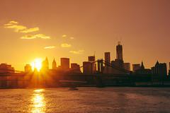 Sunset in New York City (emilymuhleman) Tags: city nyc newyorkcity sunset summer newyork skyline cityscape manhattan financialdistrict manhattanbridge manhattanskyline lowermanhattan urbanlandscape nycskyline urbanphotography newyorkcityskyline summersunset nycphoto nycsunset citysunset newyorkphoto manhattansunset newyorkphotography newyorkcityphotography financialdistrictskyline viviennegucwa viviennegucwaphotography cityphotogrpahy