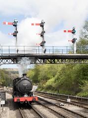 Scottish Branch line Gala. (Adrian Walker.) Tags: canon signals elements tamron grosmont nymr q6 80d 63395