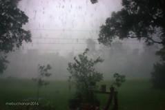 Texas Downpour (romamar76) Tags: storm rain hail texas wind