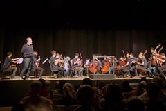 Concertos no Jardim Botnico (Bruno Mello Teixeira) Tags: rio de do janeiro botnico jardim jardimbotnico mar orquestra concertos amanh