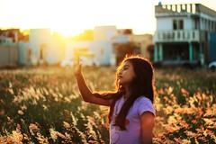 Tocas lo que no puedes sentir. (S a t a n i a) Tags: nia libertad naranja cielo atardecer flores canon t3i mexican mexicana