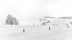 Schauinsland im Schnee (Radek Lokos Fotografie) Tags: schnee white snow black fog canon eos mono reisen outdoor freiburg landschaft 6d schauinsland radeklokosfotografie