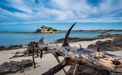 Carantec - Bretagne - France (NICOLAS BELLO) Tags: trees light sea sky cloud mer france tree castle beach nature colors beautiful rock stone architecture landscape amazing sand marine rocks stones sony bretagne lumiere beaches chateau paysage plage phrare