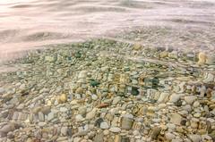 Wet Stone (Aaron Springer) Tags: beach nature water rock outdoor michigan lakemichigan pebble thegreatlakes