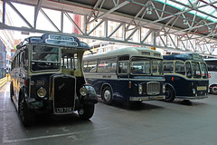 Royal Blue Line up at Victoria Coach Station (keith-v) Tags: blue station vintage coach royal victoria