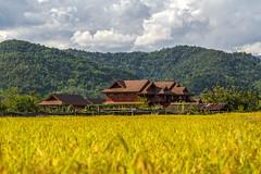 ChiangRai_9582 (JCS75) Tags: canon thailand asia asie chiangrai thailande
