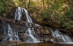 Laurel falls #1 (billd_48) Tags: plants nature water landscape spring rocks tn waterfalls greatsmokymountainsnationalpark