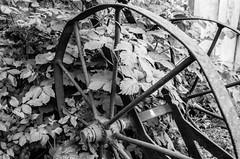 Turn (of Time) (DomiKetu) Tags: blackandwhite bw white black monochrome 35mm mono blackwhite nikon trix f100 nikonf100 romania analogue expired sibiu selfdeveloped bttb pan400 homemadesoup blackwhitephotos muzeullocomotivelorcuabur barrythorntons2bathdeveloper steamenginesmuseum
