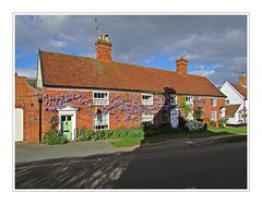 Wisteria Cottages (mr_snipsnap) Tags: flowers suffolk cottage wisteria orford