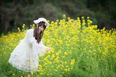 DSC_9473 (nana_tsuki) Tags: