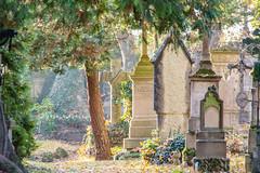 Straubing_Friedhof1 (romuepic) Tags: bayerischerwald straubing 2015