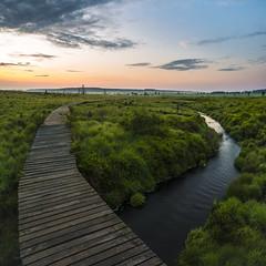 Split ways (mattis.kieffer) Tags: sunrise landscape venn hautes fagnes hohes