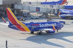 Southwest Airlines Boeing 737 N422WN -Shark Week--2530 (rob-the-org) Tags: iso100 noflash f90 cropped boeing decals 737 southwestairlines terminal4 phx discoverychannel phoenixaz sharkweek 110mm 180sec kphx skyharborinternational n422wn parkinggaragep8