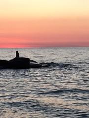 Detroit - Shoreway Cleveland Oh. #amazing #evening #beachwalking #sunsets #greatcompany #lakeerie #Edgewater. #treesilhouettes #beach #mermaid ?? (kelsey_erinbook13) Tags: beach evening amazing lakeerie sunsets mermaid edgewater beachwalking treesilhouettes greatcompany