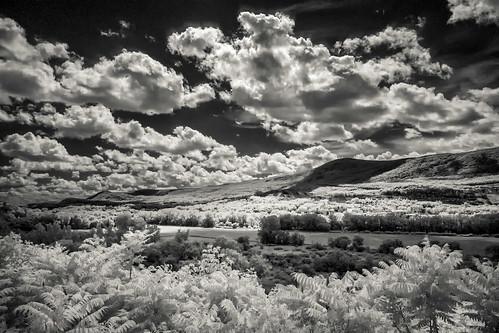 Mt Greylock Infrared